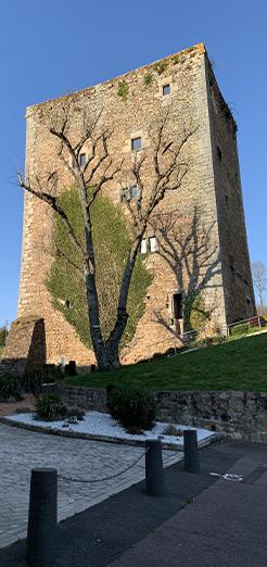 Donjon Saint-Sernin-du-Bois